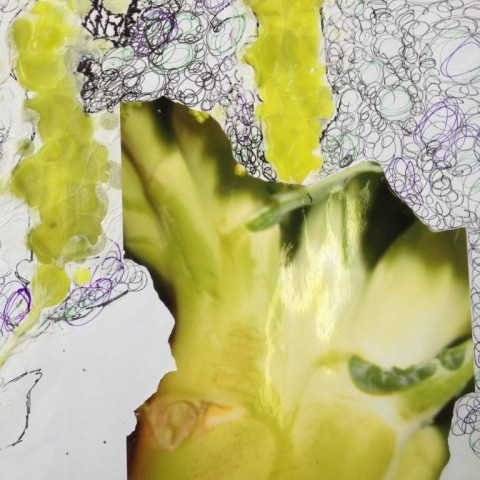 Art Students - Combined Material Brocolli